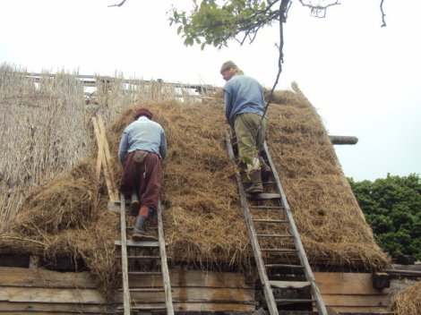 ThatchedRoof.jpg